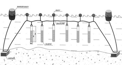 zebra_mussel_cultivation_diagram-mod